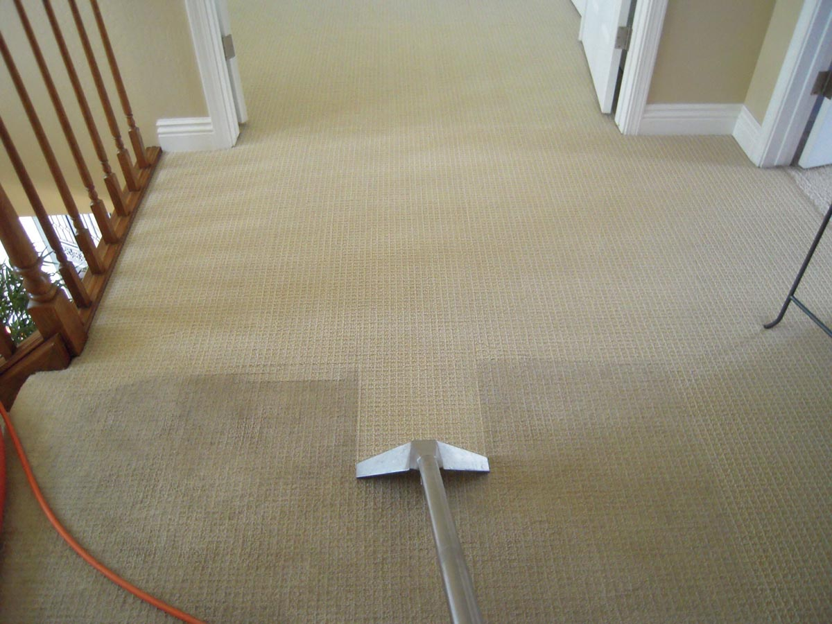 Home Bfc Carpet Cleaning