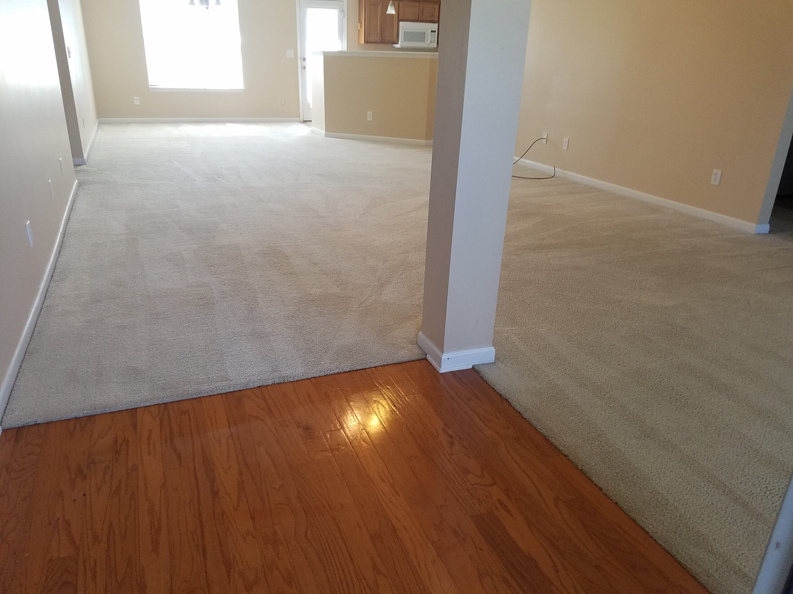 PET ODOR and STAIN REMOVAL:Scheldule an Appointment by calling 256 684 5062