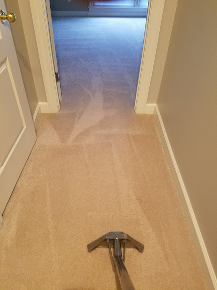 Carpet Cleaning in Huntsville, AL. Average Small Hall Cost $10.00
